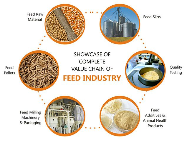Chile animal feed manufacturing industry