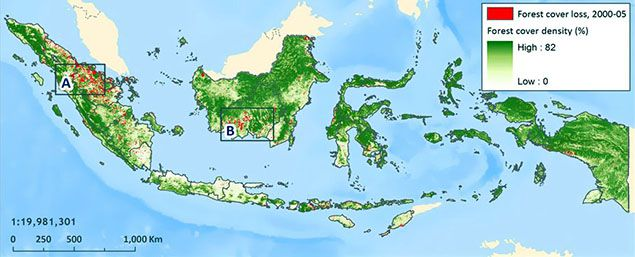 Indonesia forest cover map