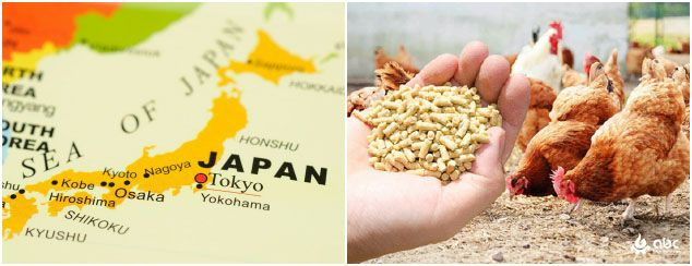 poultry feed industry in Japan