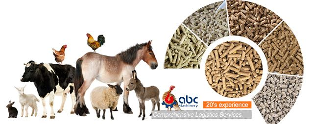 Animal Feed Making Business