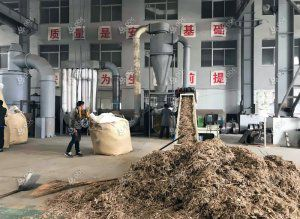 Setup A Pellet Plant for Manufacturing Pellets from Bamboo