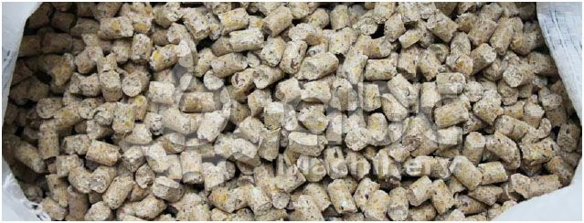 domestic animal feed pellets production