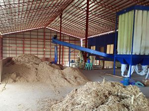 2TPH Elephant Grass Pelletizing Plant in Philippines