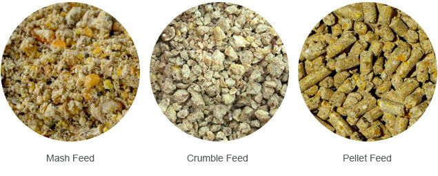 feed mash, feed crumbles and feed pellets