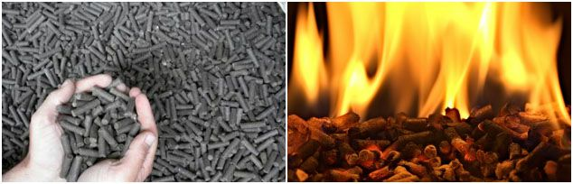 horse manure pellets vs wood pellets when burning
