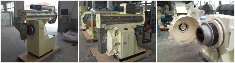 large ring die feed pellet mill
