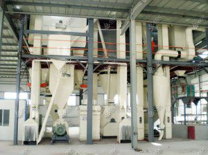 10 ton/h Poultry Feed Plant