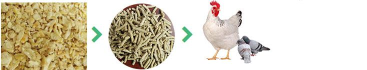 machines for making poultry feed pellets