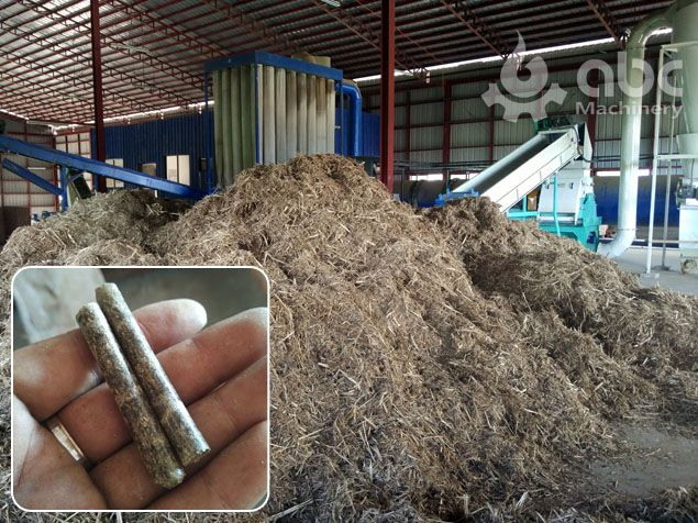 manufactured elephant grass pellets