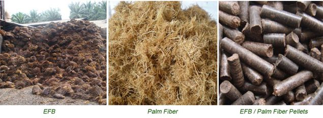 palm fiber efb pellets