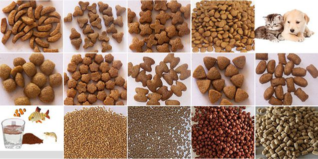 pet food and fish feed processing equipoment
