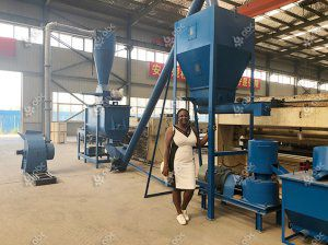 Pelleted Pig Feed Making Machine Arrived in Nigeria