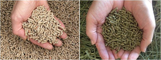 make high quality poultry feed and cattle feed