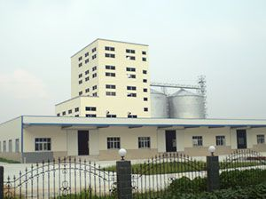 100 ton/h Poultry Feed Manufacturing Plant