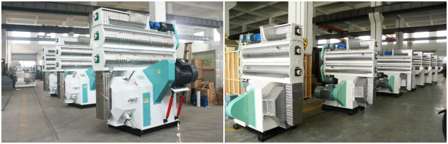 Ring Die Wood Pellets Machine