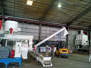 3TPH Sawdust Pellet Machine Line Set Up in Malaysia