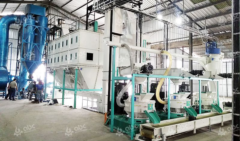 Setup Industrial Pellet Mill Project