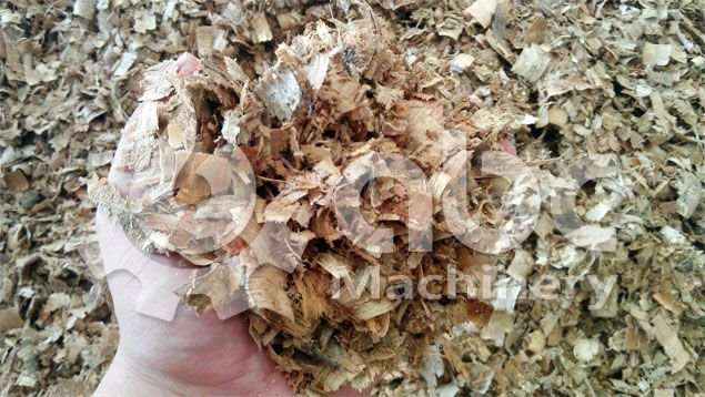 wood shavings from wood processing factory