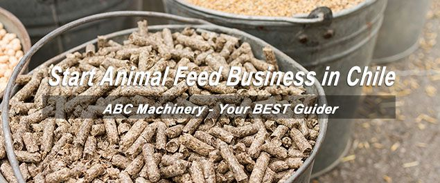 start animal feed manufacturing company