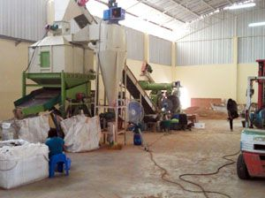 1TPH Wood Pellet Manufacturing Plant in Thailand