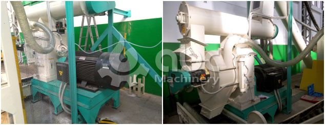 wood pellet production equipment for the pelleting project