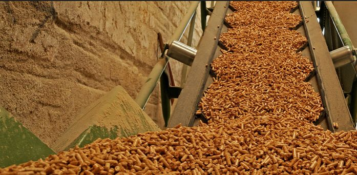 Go into the wood pellet mill market in china make pellets