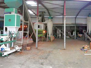 1TPH Wood Pellet Production Plant in UK