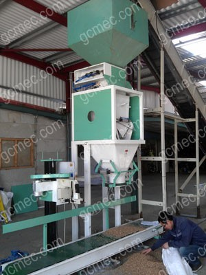 wood pelletizing